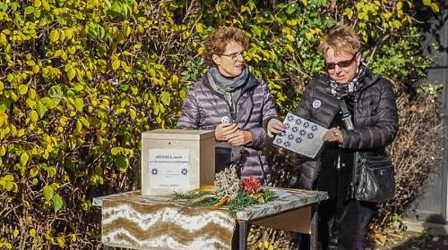 Kwesta na cmentarzu - listopad 2018-1